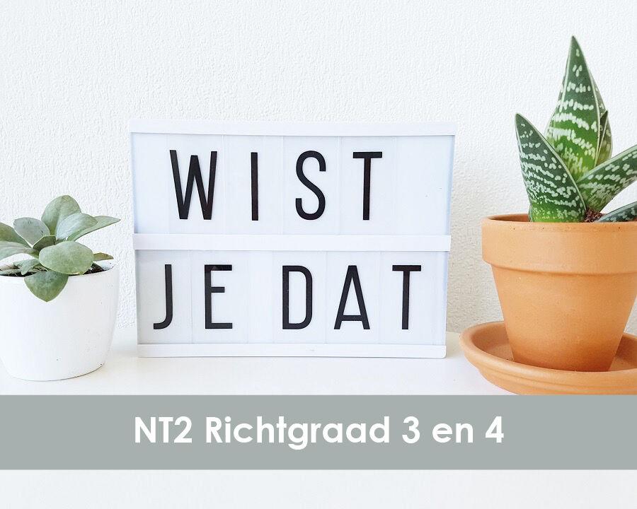 Wistjedat NT2 RG34