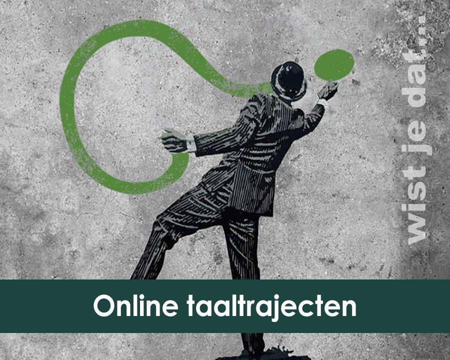 Wistjedat online taaltrajecten